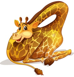 Cute giraffe folding its neck vector image