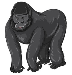 Gorilla with happy face vector
