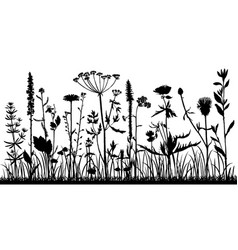 Background with drawing herbs and flowers vector
