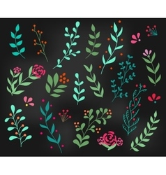 Flourish ornate decoration element vector