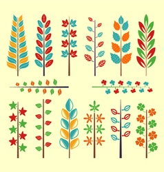 Maple leaf ornament collection vector