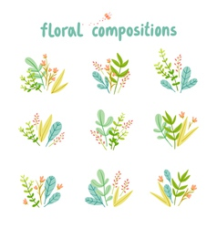 Flowers and leaves compositions collection vector
