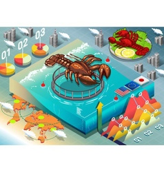 Isometric infographic of lobster breeding vector