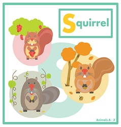 Squirrel with friends English A to Z vector image
