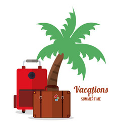 vacations summer time - palm suitcase bagagge vector image vector image