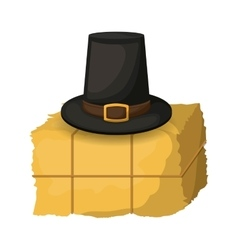 Hay and hat of thanksgiving vector