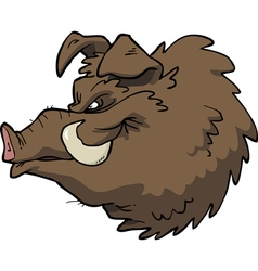 Boars head vector