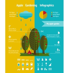 Growing apple garden infographics elements vector