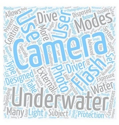 How do Underwater Cameras Work text background vector image
