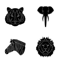 Tiger lion elephant zebra realistic animals vector