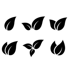 set of leaves icons vector image