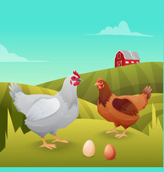 Hens standing on grass with farm background vector