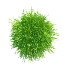 Ball green grass vector