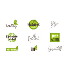natural organic bio food labels and logos set vector image