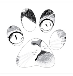 Silhouette animal trail vector
