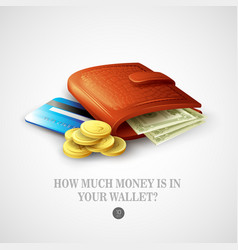 Purse with money credit cards and coins vector