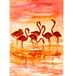 Flamingo in sunset vector