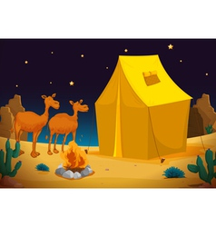 camels and tent vector image vector image