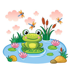 The frog sits on a leaf in the pond vector