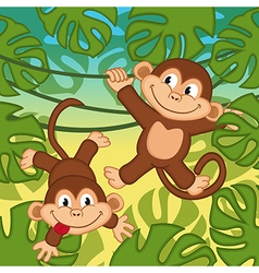 Monkey in jungle vector