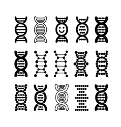 Set of black DNA icons vector image