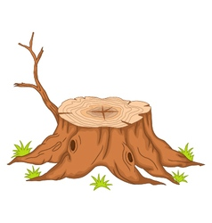 root of tree cartoon vector image vector image