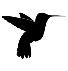Black silhouette of hummingbird vector