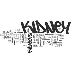 Bean shaped kidneys text word cloud concept vector