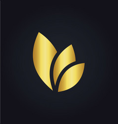 Leaf eco colored gold logo vector