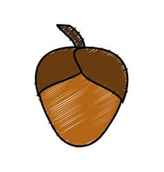 Acorn icon image vector