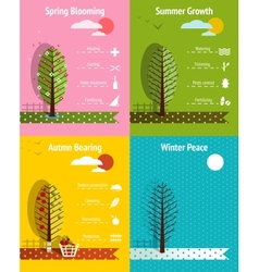 Apple Garden Seasons Infographics Elements vector image vector image