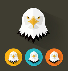 Bald eagle portrait with flat design vector