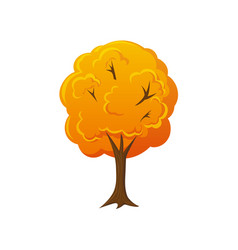 cartoon style fall autumn tree vector image vector image