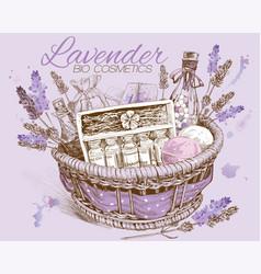 Lavender basket vector