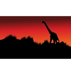 one brachiosaurus in fields at morning vector image vector image