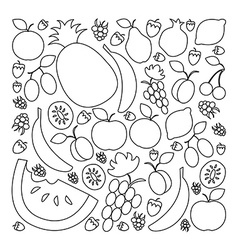 Fruit set in flat linear design style vector