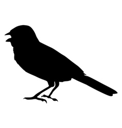 Black silhouette of sparrow vector