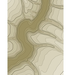 abstract topographic map vector image vector image
