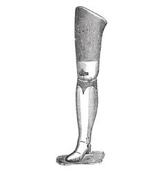 Artificial leg vintage vector
