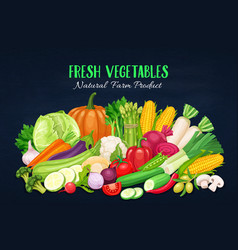 colorful organic banner with vegetables vector image