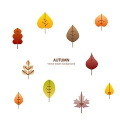 Fall leaves tree background vector