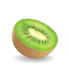 kiwi fruit on white background vector image vector image