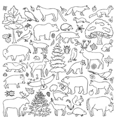 Doodle forest animals vector
