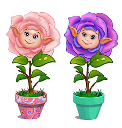 flowers with human face and drops on leaves in pot vector image vector image