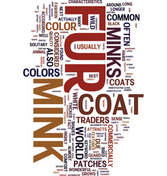 Mink fur coat text background word cloud concept vector
