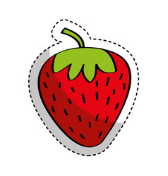 strawberry fresh fruit drawing icon vector image