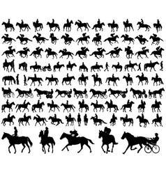 Riding horses collection vector