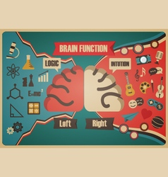 276brain function vector
