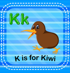 Flashcard letter k is for kiwi vector