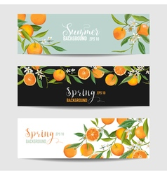 Orange citrus floral banners and tags set vector